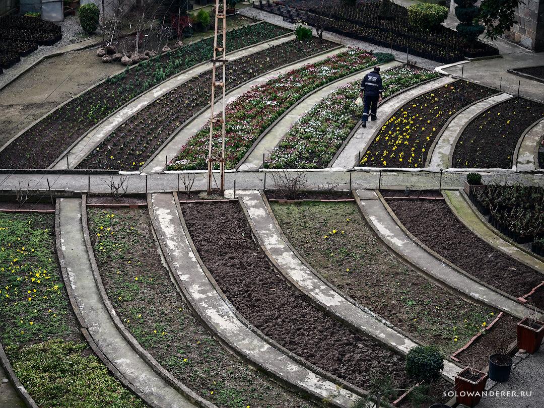 Садовник, Трабзон Турция