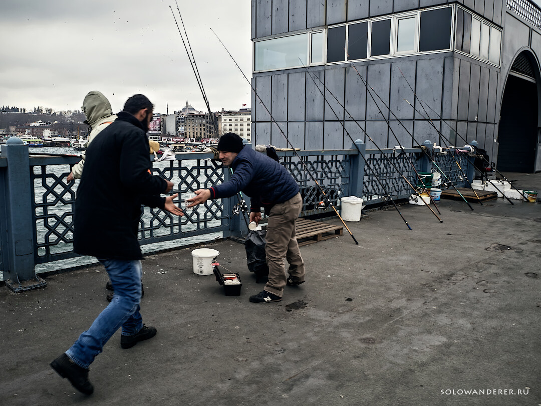 Рыбаки на мосту